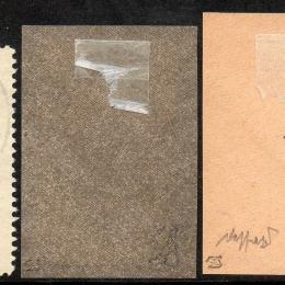 1912 Svizzera Precursori Pro Juventute (N° A/C)